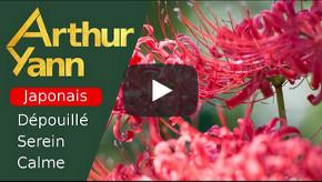 Fleur dautomne